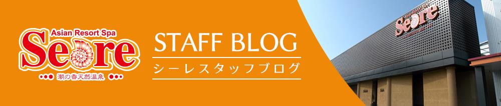 シーレスタッフブログ