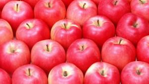 りんご、フルーツ、収穫、背景-768x1366