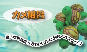 カメ風呂 アメブロのコピー