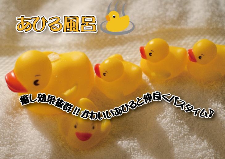 10月6日(土)~8日(月祝)はあひる風呂♨