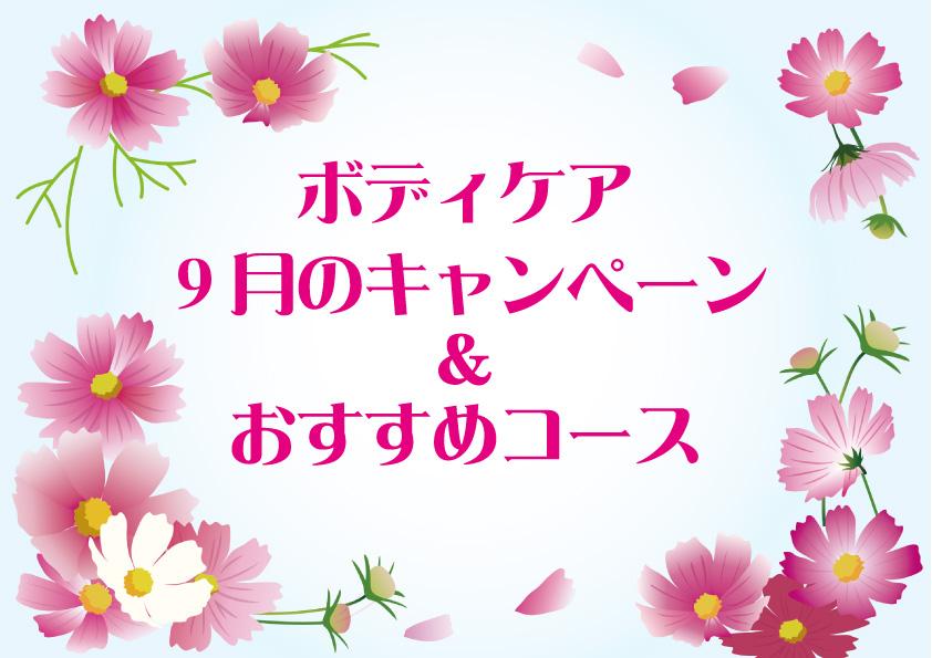 ボディケア9月のおすすめ